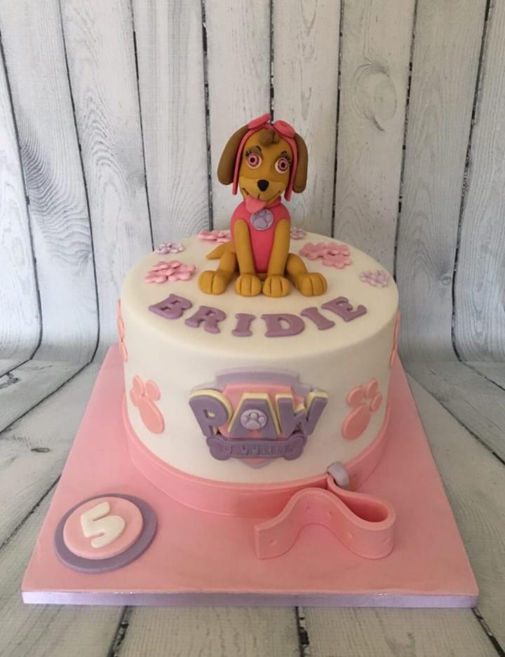 Nottingham Cakes Birthday Cakes Novelty Childrens Cupcakes